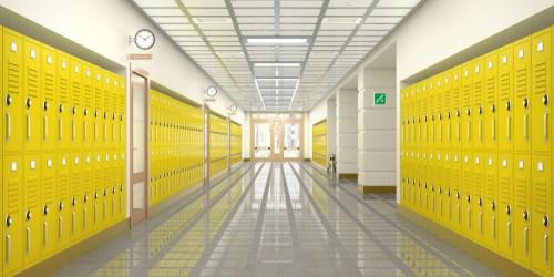 School | Education | School Violence