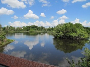 Raymond H. Neri Community Park | Lealman | Recreation