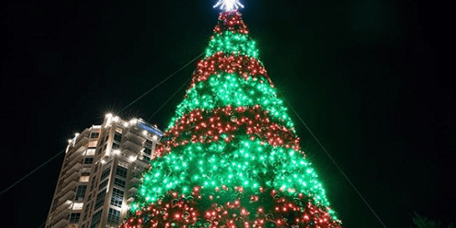 St Pete Christmas Tree | Holidays | Events