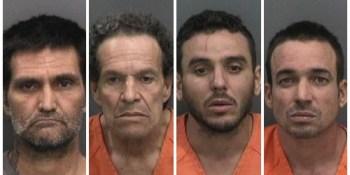 HIllsborough Sheriff   Crime   Arrests