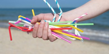 Plastic Straws | Environment | Pollution