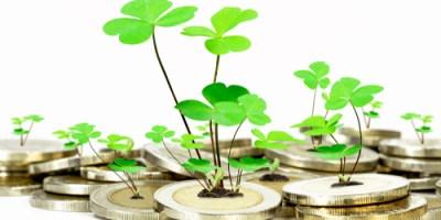 Business   Entrepreneurship   Seed Money