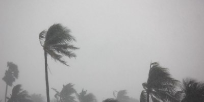 Storm   Weather   Tropical Storm