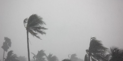 Storm | Weather | Tropical Storm