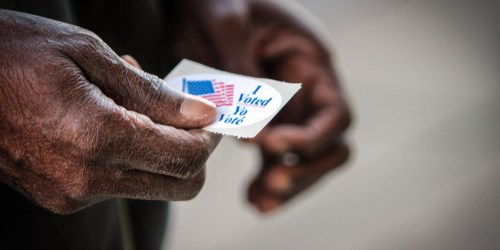 Voter | Elections | Politics