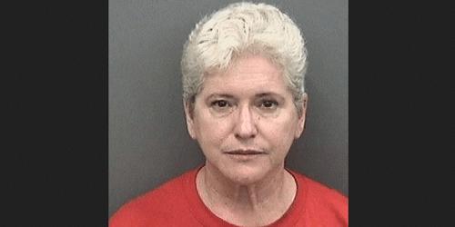 Shelia Marie Vakili | Hillsborough Sheriff | Arrests