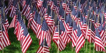 American Flags | Patriotism | TB Reporter