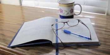 Writer | M.R. Wilson | Sassy Sandpiper