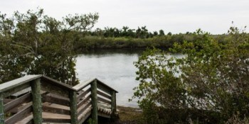 Anclote River Park | Fishing Pier | Recreation