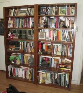 bookcases | Sassy Sandpiper | m.R. Wilson