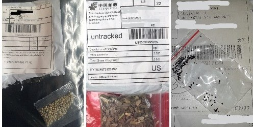 chinese seeds | florida agriculture department | tb reporter