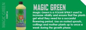 magic_green