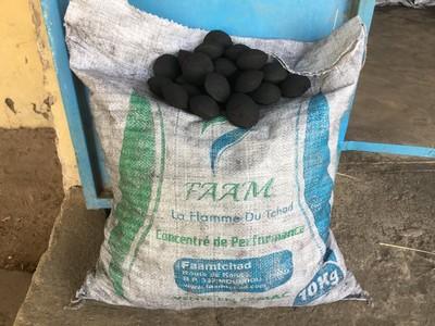Tchad: au pays du coton, le «faam» et le jatropha font une entrée en fanfare