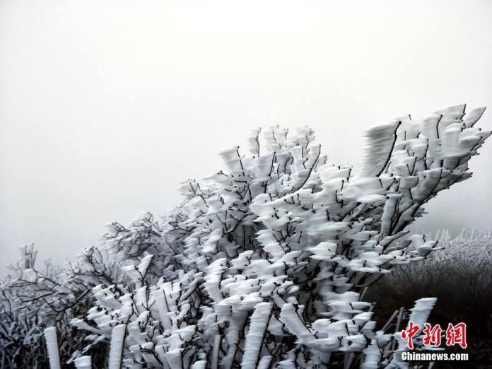 น้ำแข็งหน้าตาประหลาดผุดที่ภูเขาจินจื่อซานในกว่างตง