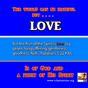 LOVE fruit of the spirit gal 5 1.fw