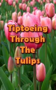 tiiptoeing-tulips