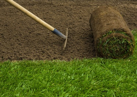 Turf Laying - TDG Garden Services