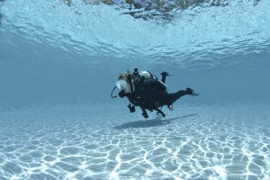Supervised Diver_Small Image