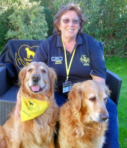 Eileen Slattery - Therapy Dogs Nationwide