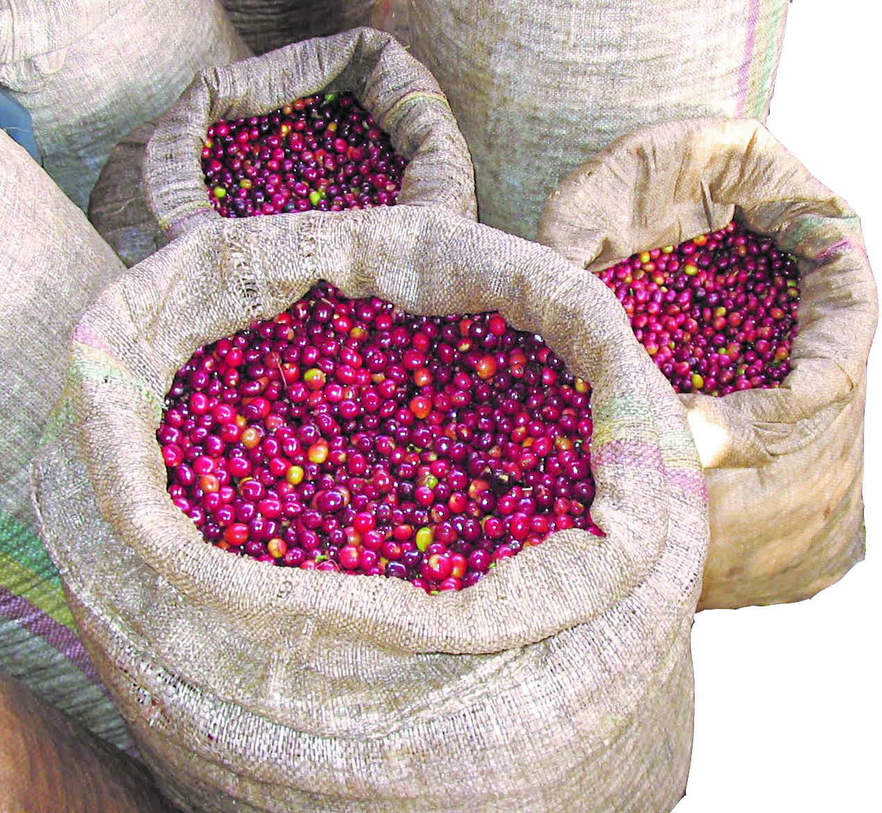 Coffee Prices Rise In July After Three Months Of Decline