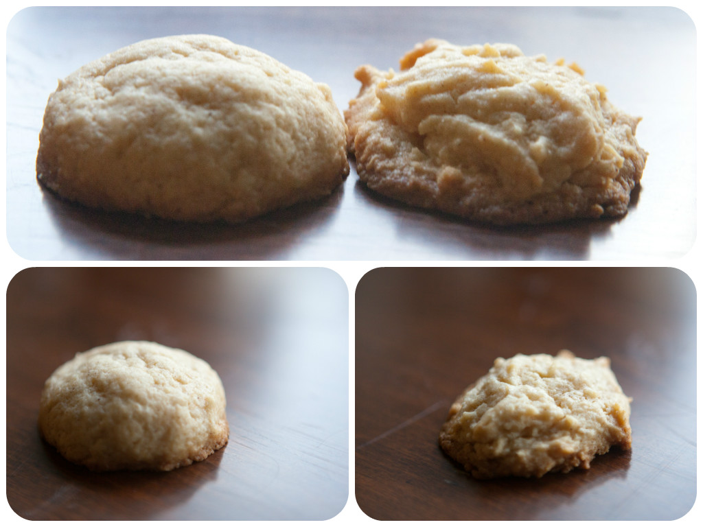 Rolling your Eggnog Cookies between your hands instead of just scooping your dough results in a MUCH Prettier Cookie!