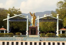 Sri Venkateswara University Assistant Professor 125 Posts Notification released www.svuniversity.edu.in