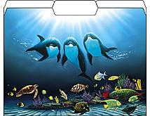Dolphin Celebration File Folders from Wyland (12 pk)