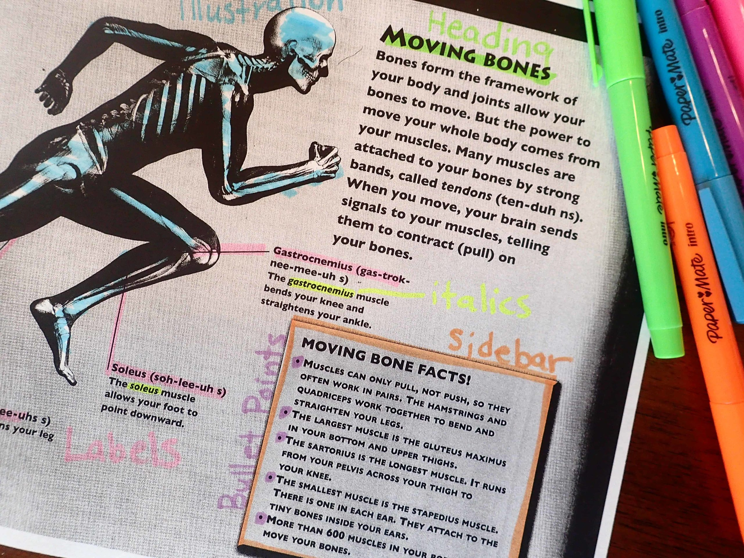 Text Features Engaging Activities