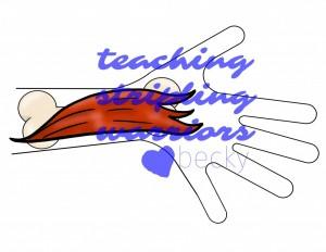 hand bone muscle wm