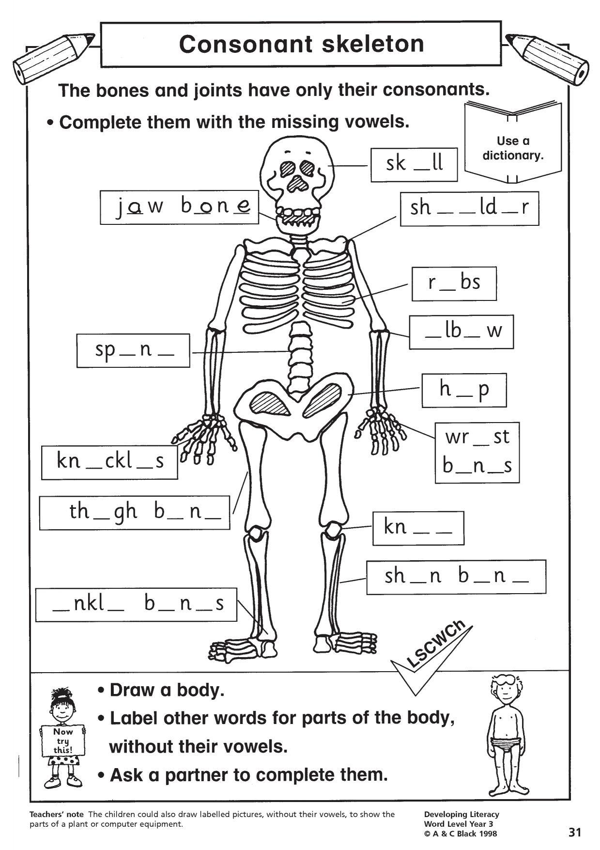 Consonant Skeleton