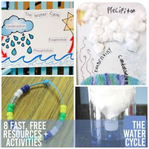 8 Fast, Free Water Cycle Resources and Activities  Teach Junkie