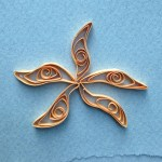 Quilled Sea Star