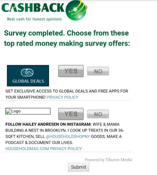 Cashback Research survey
