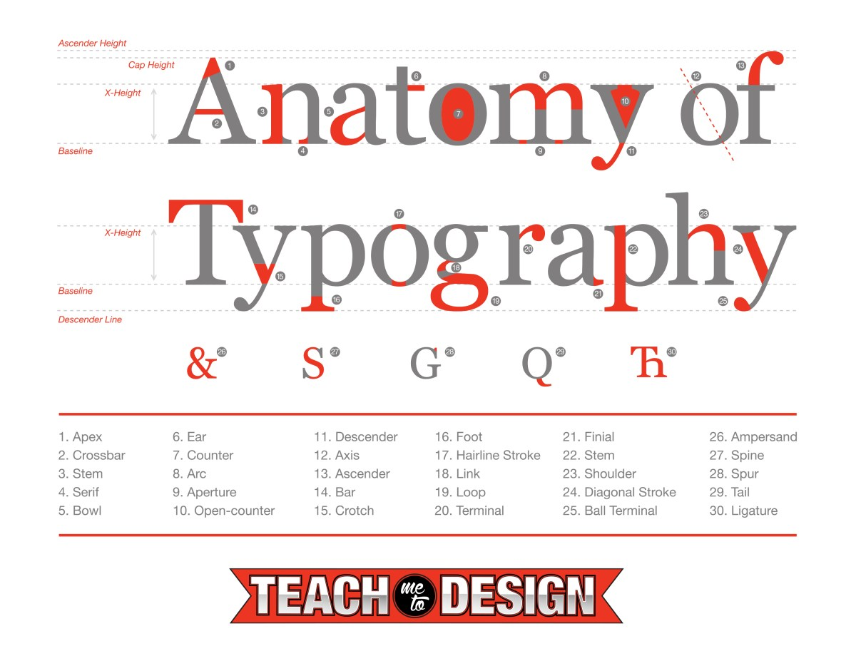 Anatomy Of Typography