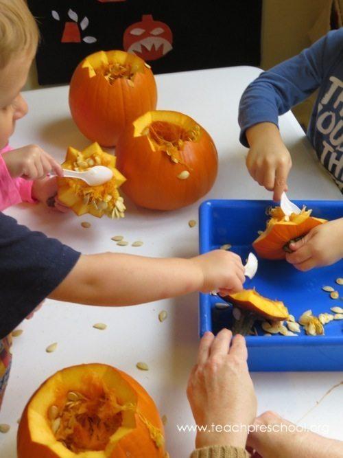 Let's make pumpkin seed soup!