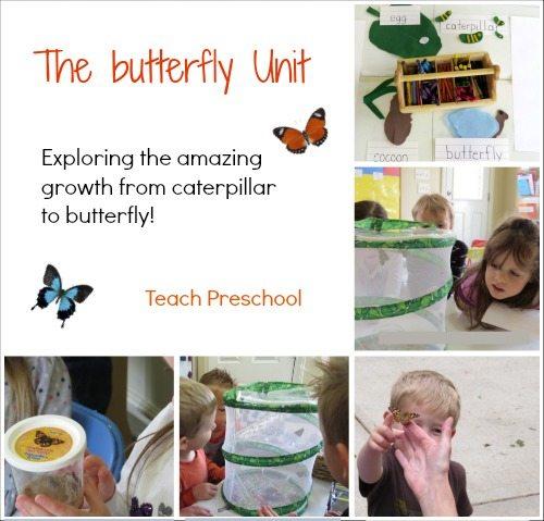 The butterfly unit in preschool