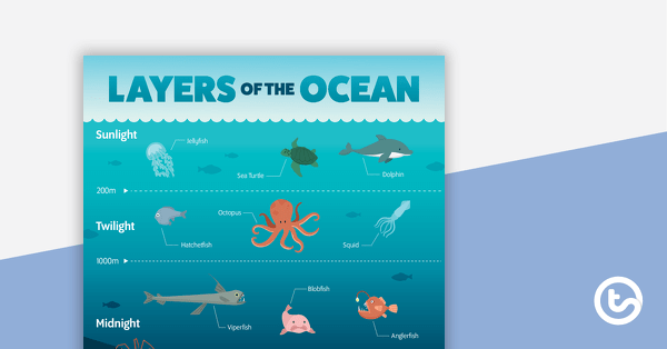 Layers Of The Ocean Poster Teaching Resource