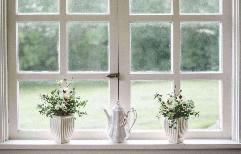 clean-window-sill-with-flowers-teachworkoutlove.com