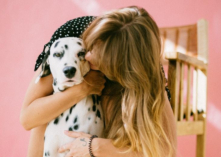 10 Most Effective Ways to Keep Your Home Pet Hair Free