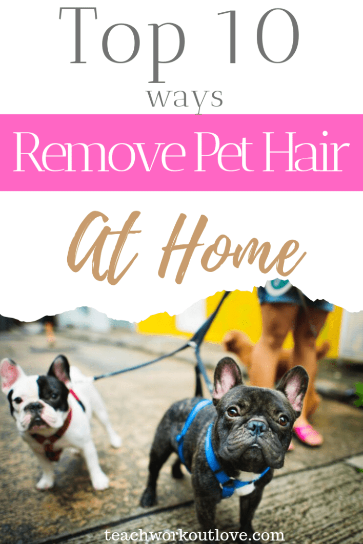 10-most-effective-ways-to-remove-pet-hair-at-home-teachworkoutlove.com-TWL-Working-Moms