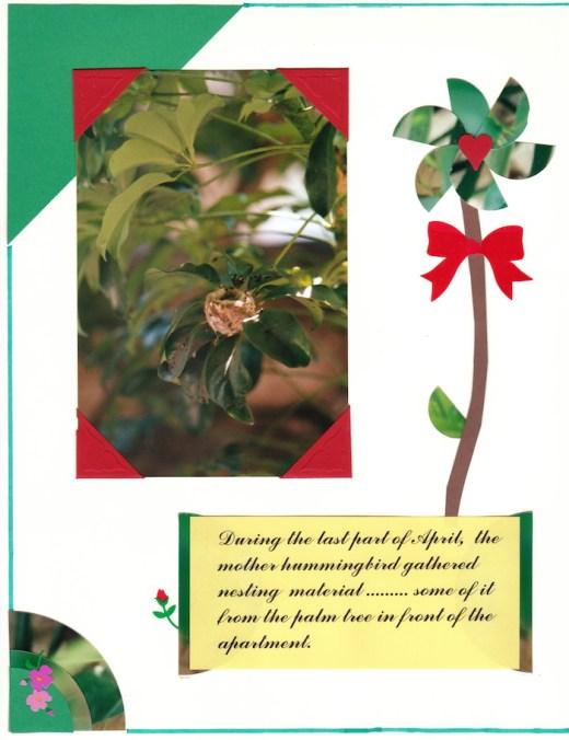 2000 Hummingbird