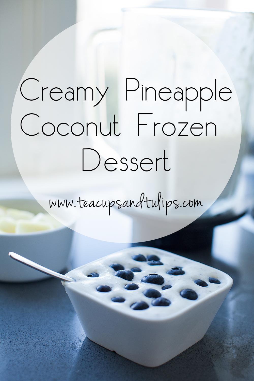Creamy coconut frozen dessert
