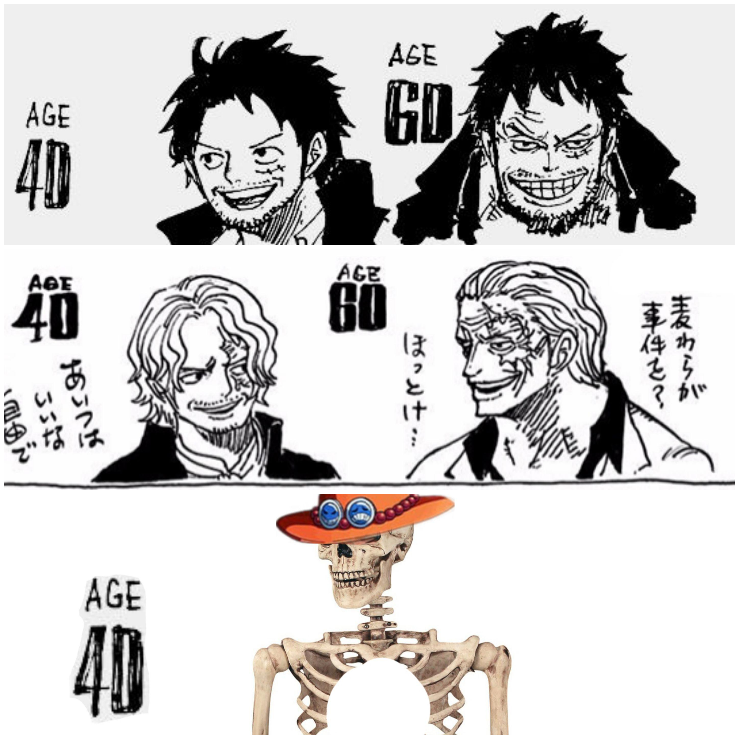 05/09/2021· many fans have drawn the luffy images in the older ages, such as 40 years or 60 years in future. Luffy Age 40 And 60 2896x2896 Wallpaper Teahub Io