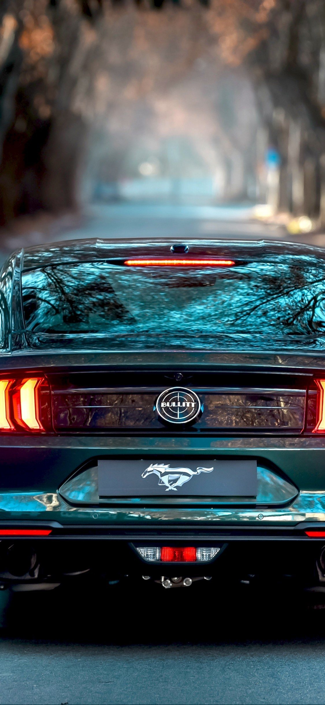 Enjoy our curated selection of 288 girls & Ford Mustang Bullitt Back View Road Muscle Cars Mustang Wallpaper 4k For Mobile 1125x2436 Wallpaper Teahub Io