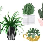 Plant Family Aesthetic Desktop Wallpaper Succulents 1400x700 Wallpaper Teahub Io