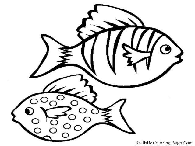 Cartoon Fish Drawings, Free Printable Fish Coloring - Sea Fish