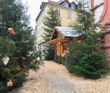 Winterwald-Fulda-Team-Aulich- 2017-04-02-35