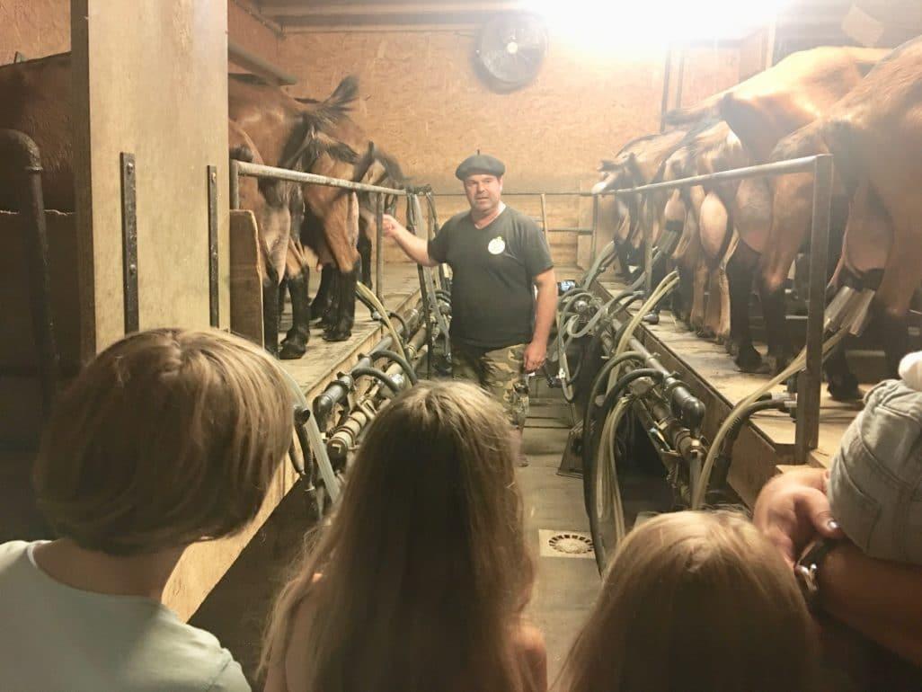 Élevage chèvres Rocamadour