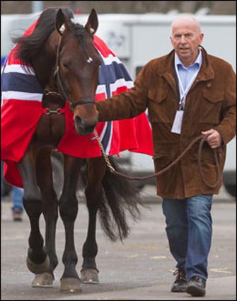 Yarrah Boko klar til dyst! Her leies han inn på stallbakken på Vincennes av Jan-Erik i spesialsydd dekken fra Finn-Tack. (Foto: Eirik Stenhaug)
