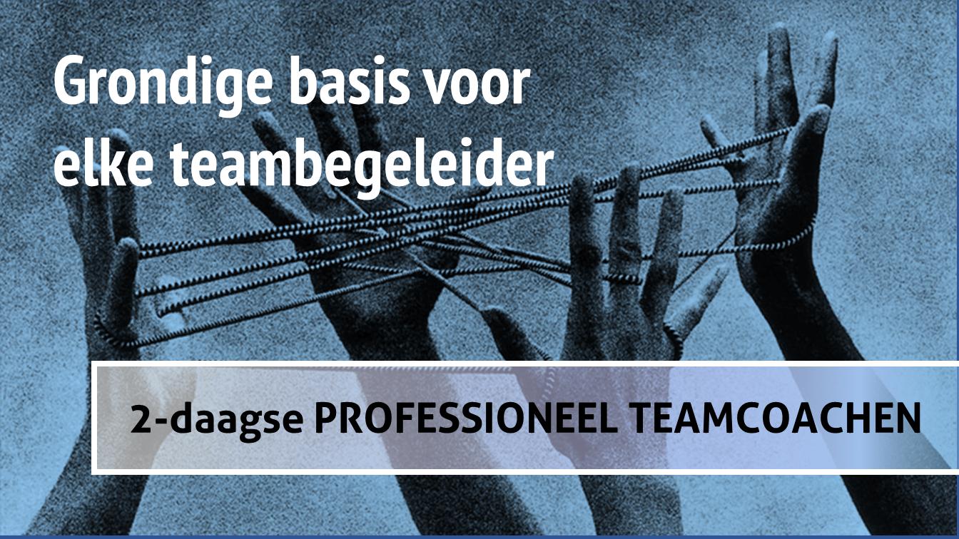 Teamchange basistraining teamcoach Professioneel Teamcoachen